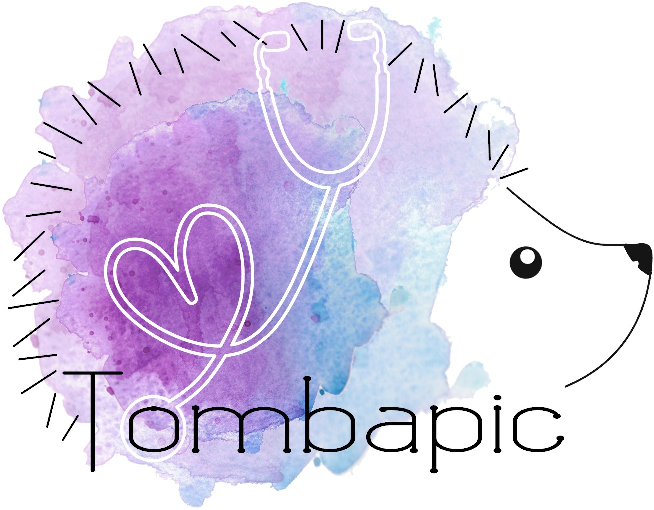 Association Tombapic